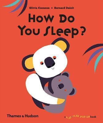 How Do You Sleep_ Book by Bernard Duisit and Cosneau Olivia
