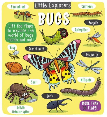 Little Explorers: Bugs