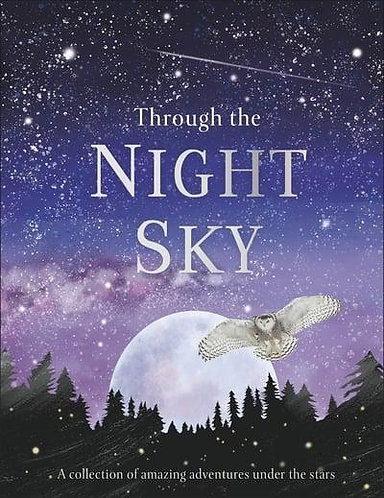 Through the Night Sky