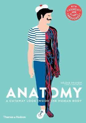 Anatomy - A Cutaway Look Inside the Human Body