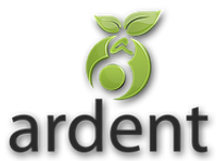 ARDENT PARTNERS LIMITED