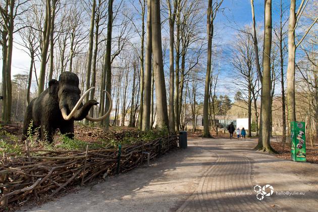 Raritäten im Zoo Rostock