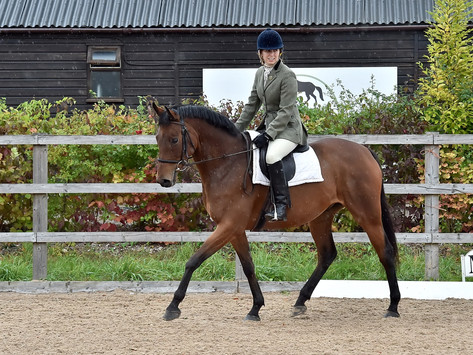 DRESSAGE AND A TIMELINE