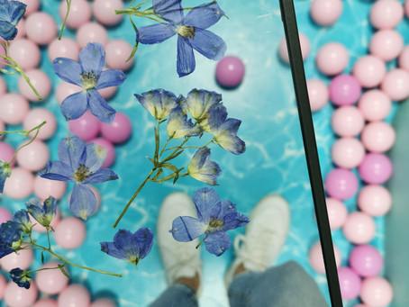 Des fleurs séchées chez Plouf