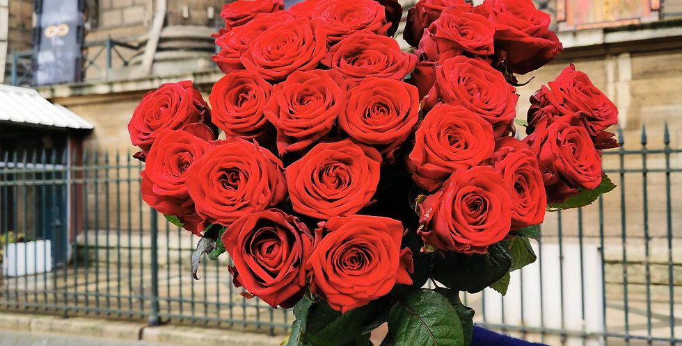 19 Roses rouges