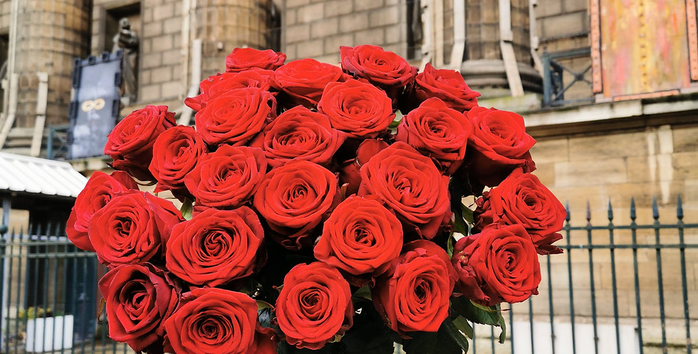 25 Roses rouges