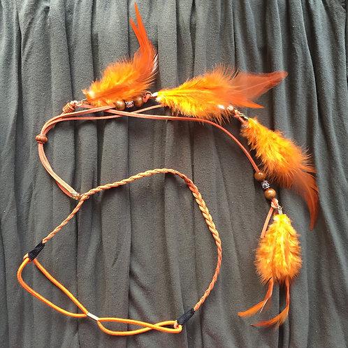 Feathers Orange Swan