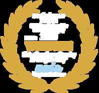 award AP.png