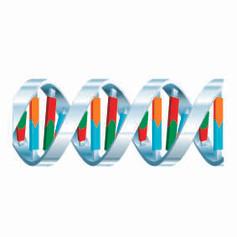 Genome diagrams