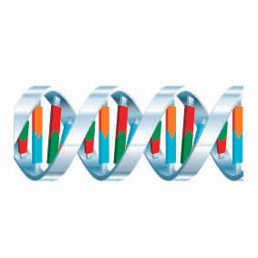 DNA00.jpg