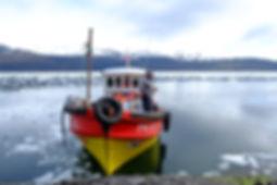 navigating the patagonian fjords
