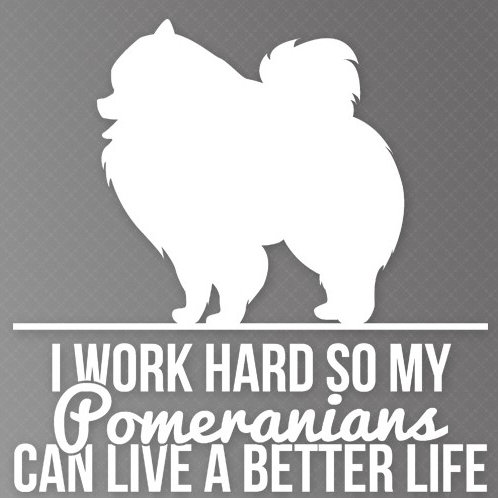 I Work so hard so my Pomeranians can live a better life