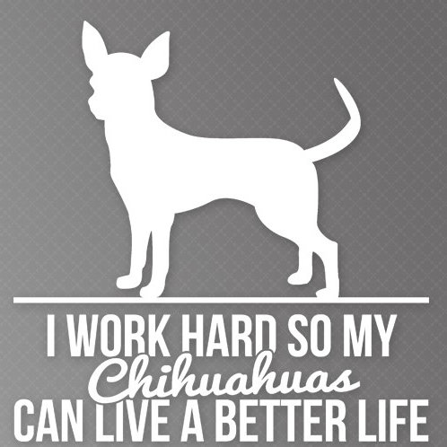 I Work so hard so my Chihuahuas can live a better life