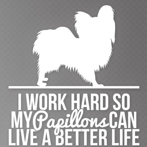 I work so my Papillons can live a better life