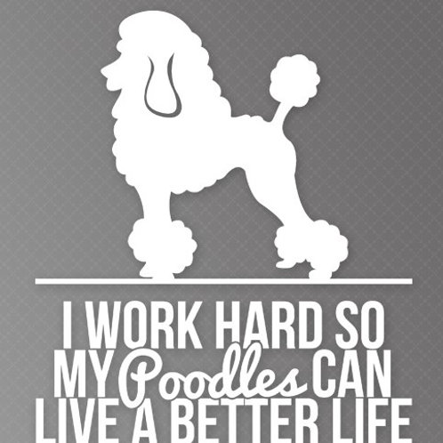 I Work so hard so my Poodles can live a better life