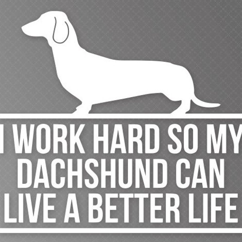 I work so my Dachshund can live a better life