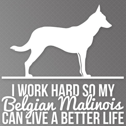I Work so hard so my Belgian Malinois can live a better life