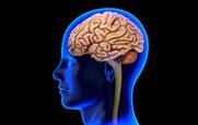 A Blood Test That Can Detect Alzheimer's???