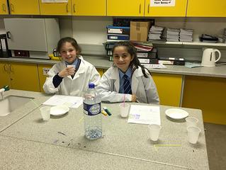 Year 8 STEM Club - Biology