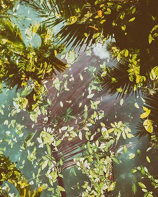 MiamiReflections.jpg