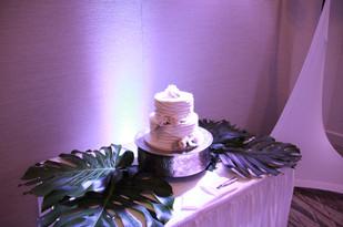 Giant monstera leaves cake table