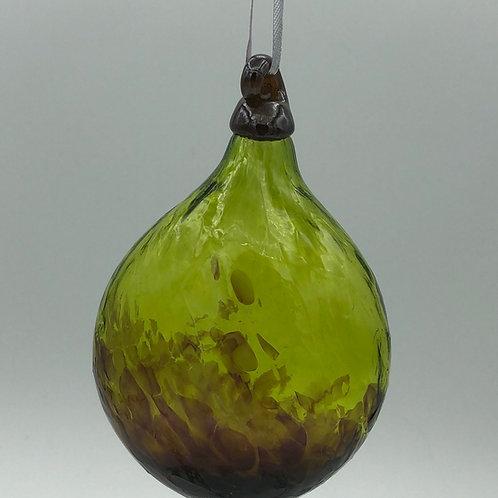 Glass Fig