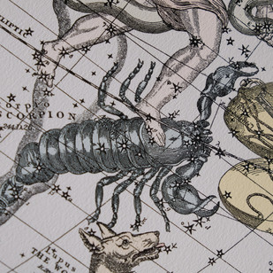 The Constellations détails.jpg