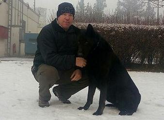 imdt qualified dog trainer