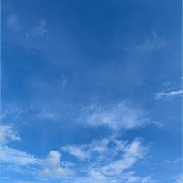image_2021-07-02_102443.png