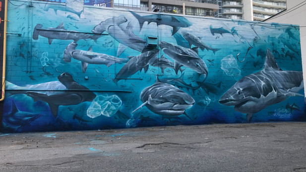 Sharkwater Pangea Seed Mural with Christina Mazzulla and Willy Wales