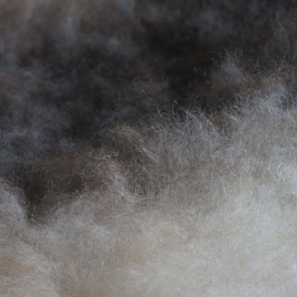 Zoom Bicolour fleece