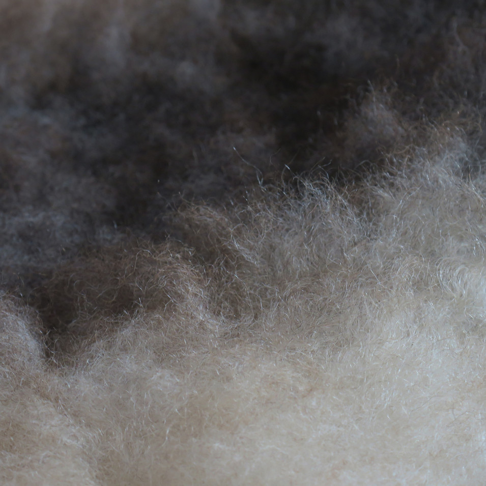 Zoom Bicolour fleece