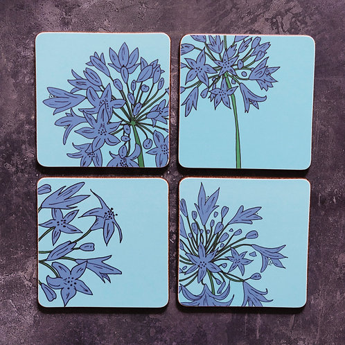 Scilly Agapanthus Coasters
