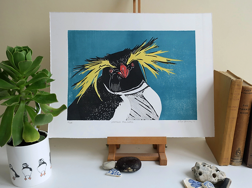 Northern Rockhopper Print-By Vic Heaney