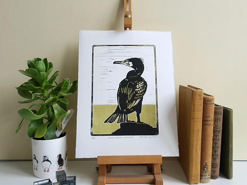 White Island Cormorant Print - By Vic Heaney