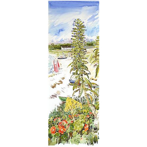 Echiums Print- Stephen Morris
