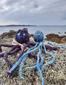 Category 001 – Finger knitted Octopus