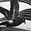 Thumbnail: Storm Petrel Print - By Vic Heaney