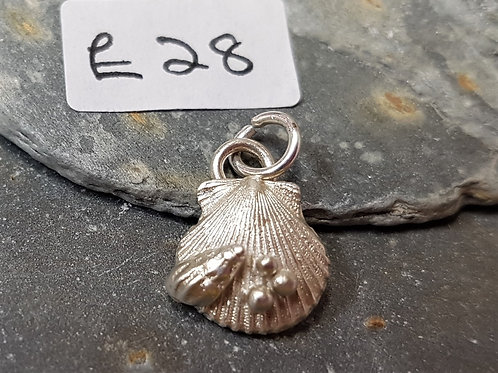 Scilly Seashell Silver Pendent