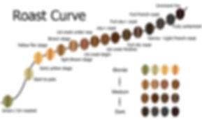 Coffee Roast Curve