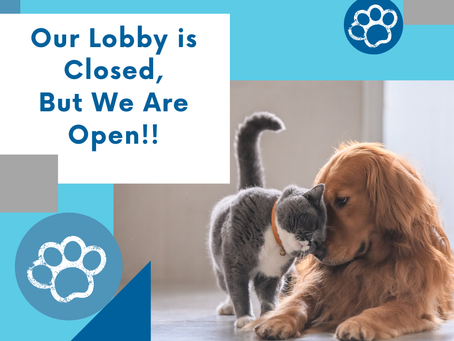 Our Lobby is closed, but we're still Open!