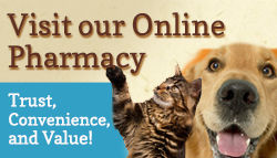 Visit our Online Pharmacy.  Trust, conveniece, and Value!