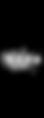 logo 29k.png