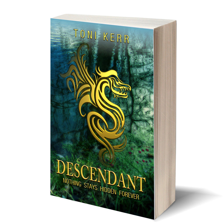 Descendant 3Dbook.jpg