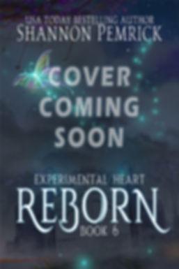reborn-holder-norm.jpg