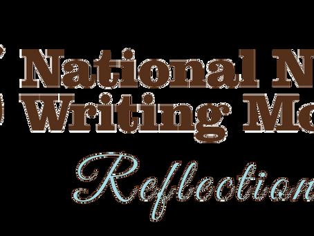 NaNoWriMo, Reflections