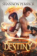 destiny-norm.jpg