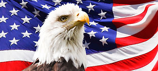 365 bald-eagle-and-a-flag.jpg