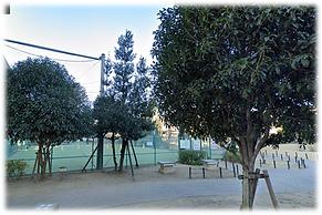 本田東公園1