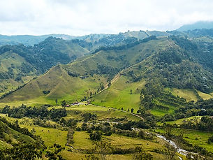 800px-Colombia_Landscape_Near_Salento_(40291533535).jpeg